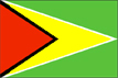 [Country Flag of Guyana]